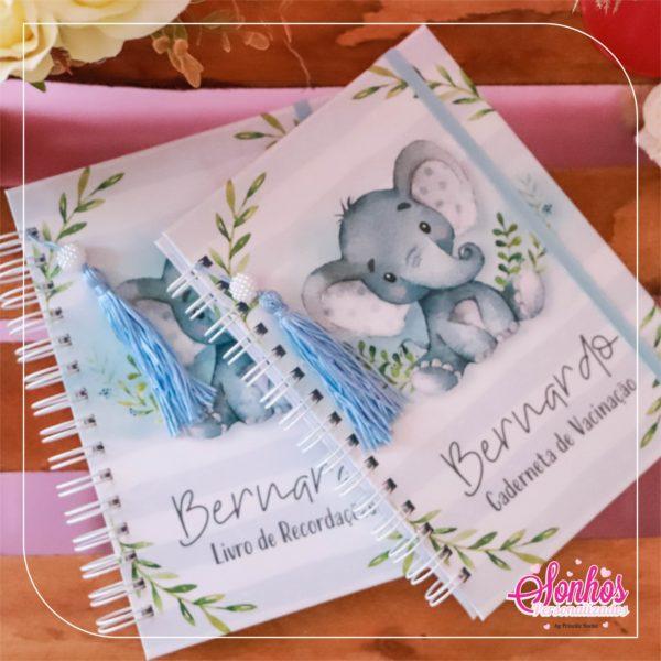 Livro menino elefantinho